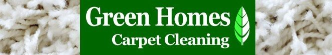 green carpet cleaning title banner